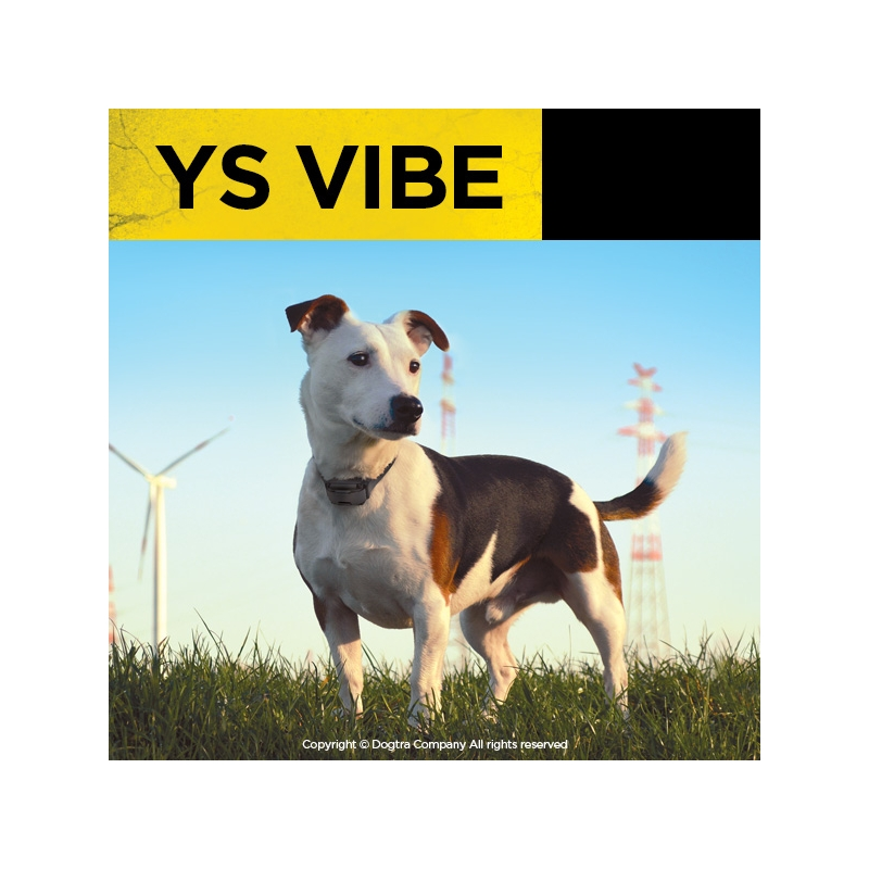 ys-vibe (3)