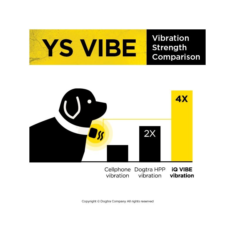 ys-vibe (4)